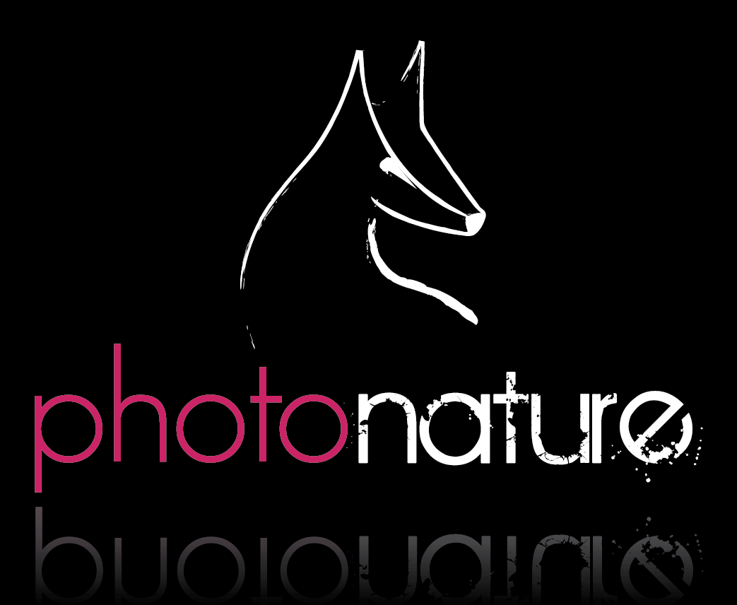 logo photonature